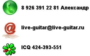 Контакты ( телефон, e-mail, ICQ )